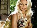 Biography Pamela Anderson - Animal Rights | BahVideo.com