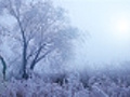 Start of winter | BahVideo.com