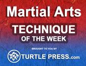 Martial Arts Technique of the Week - Taekwondo  | BahVideo.com
