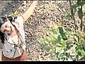 Mandara Poo - Malayalam Movie Song  | BahVideo.com