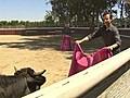 Neal Karlinsky the Bullfighter  | BahVideo.com