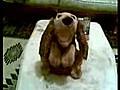 ark s yleyen oyuncak k pek | BahVideo.com