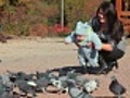 mother and baby feeding pigeons | BahVideo.com