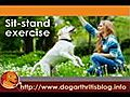 Dog Physical Therapy - Muscle Strengthening | BahVideo.com