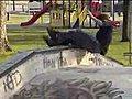Skateboarding SLAMS | BahVideo.com