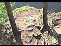 Valse Triste By Jean Sibelius  | BahVideo.com