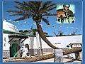 Rachid Nouni-w ssayet Lakhdar    BahVideo.com