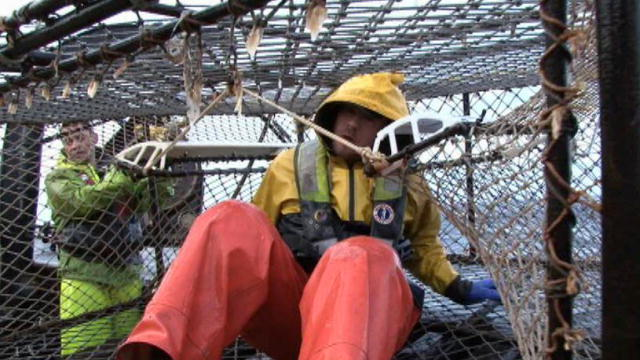 Deadliest Catch 7 Burning the Bait Boy | BahVideo.com