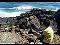 Point Dume Sea Lions 7 11 10 | BahVideo.com