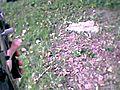 Airsoft Camera Test - Ak47 Kalashnikov Head  | BahVideo.com
