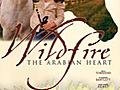 Wildfire - The Arabian Heart | BahVideo.com