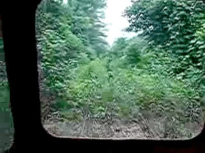 Overgrown Railroad | BahVideo.com