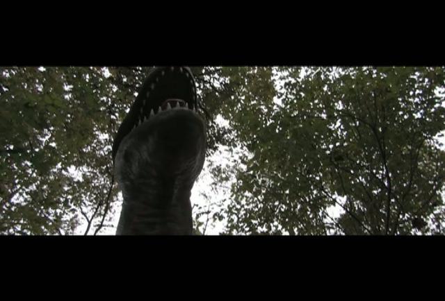 Passenger Pigeons Teaser Trailer | BahVideo.com