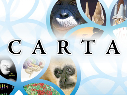 CARTA The Genetics of Humanness The  | BahVideo.com