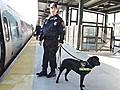 Keeping America s Trains Safe for Christmas | BahVideo.com