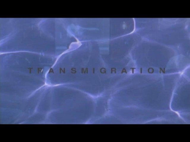 Transmigration | BahVideo.com