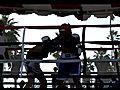 GABY THE PITBULL VS KID amp quot VENICE BOX  | BahVideo.com