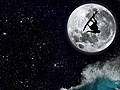 Surfing At Night | BahVideo.com