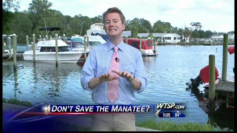 Manatee protection unconstitutional  | BahVideo.com